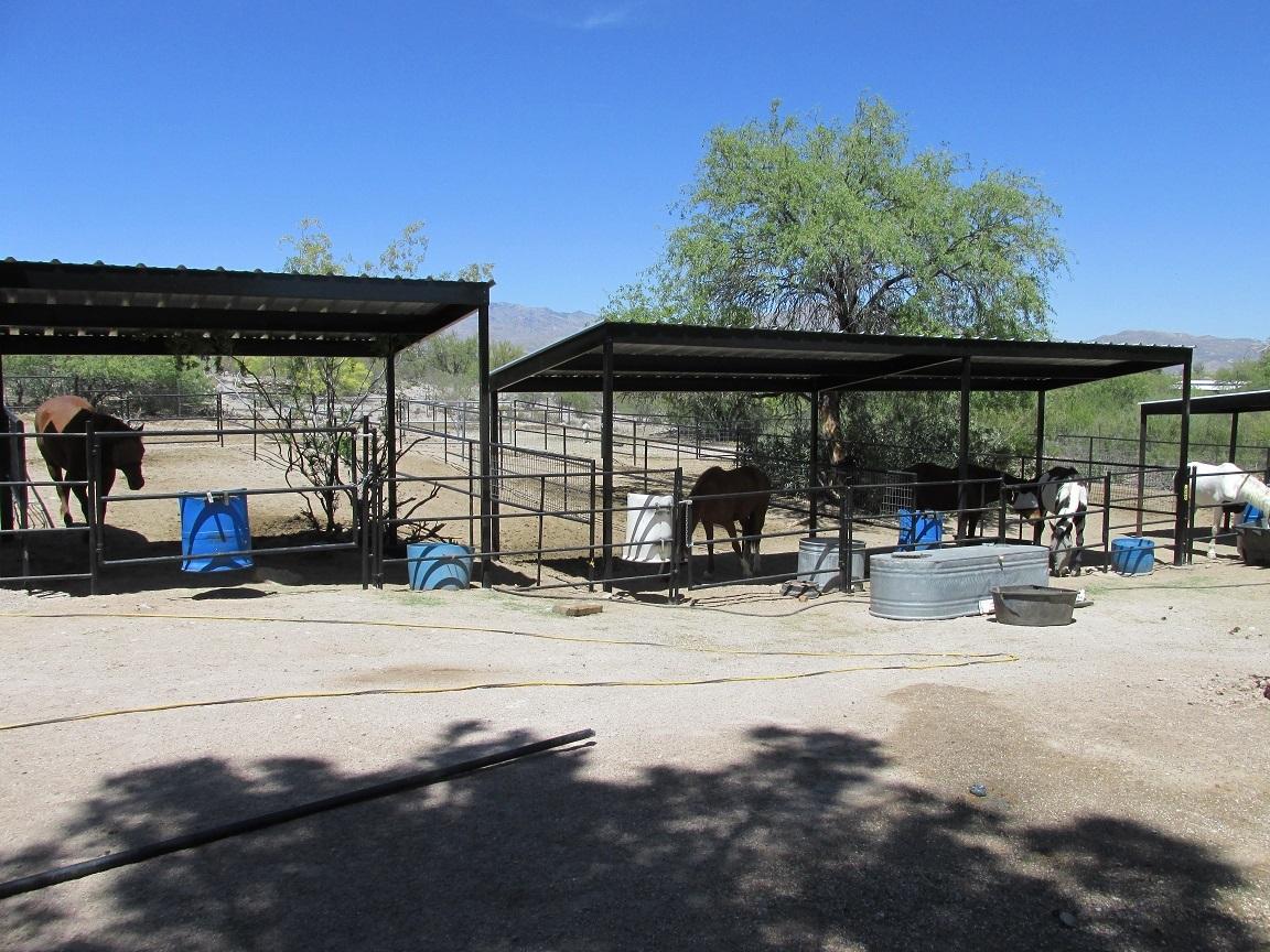 az pet kennels for sale phoenix dog runs installed  horse
