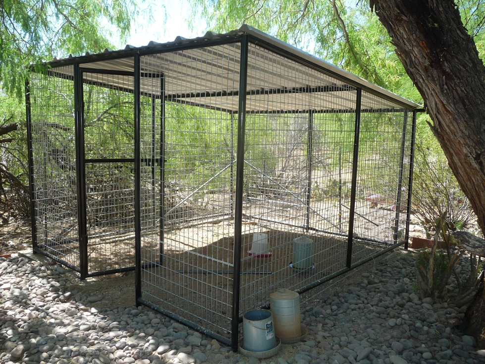 Phoenix Pet Kennels For Sale Phoenix AZ Dog Runs Kennels