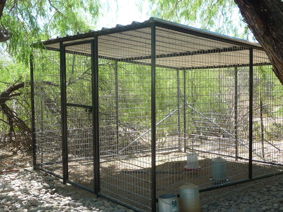 Large Bird Aviaries For Sale in Arizona