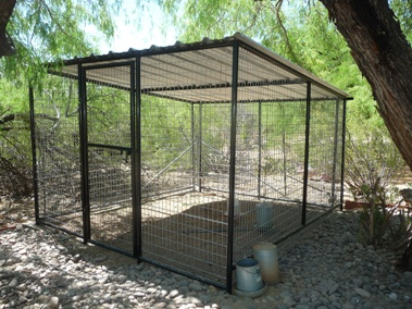 arizona dog kennels home page