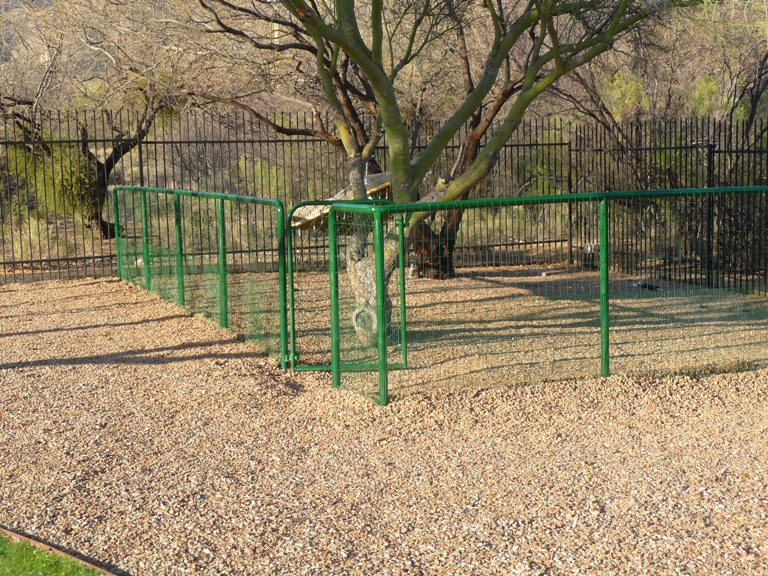 Dog run fences how to make fence for Dog fence for sale cheap