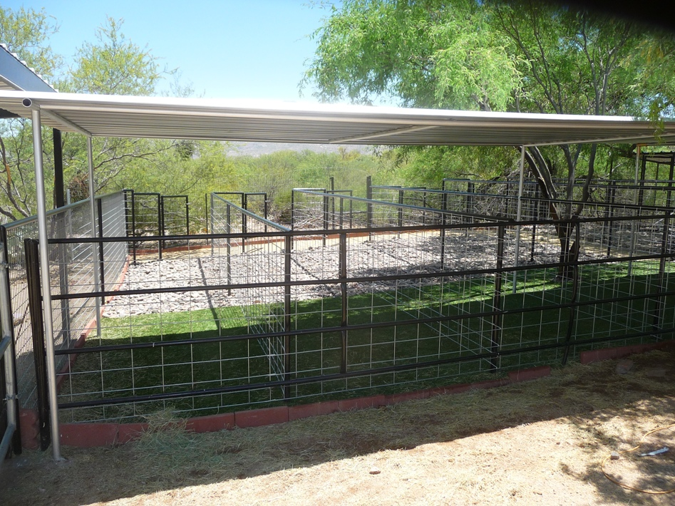 Top Rated Company for Dog Run Installed Phoenix Arizona