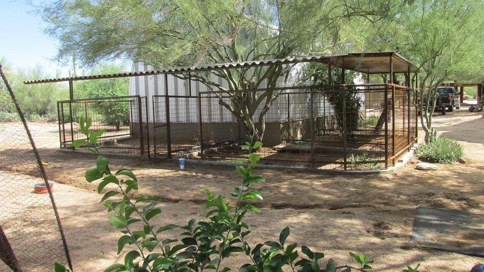 Installation Dog Runs For Sale In Phoenix AZ