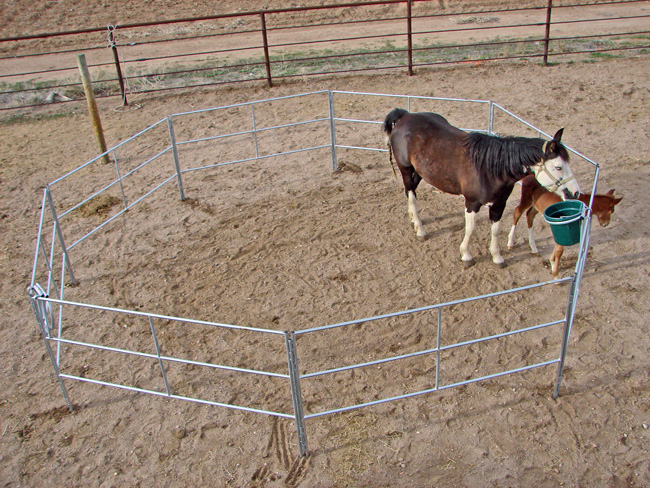 Portable Corral Systems For Horses : Az portable panels horse corrals phoenix